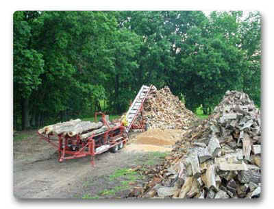 Processing Firewood for customers in Mo