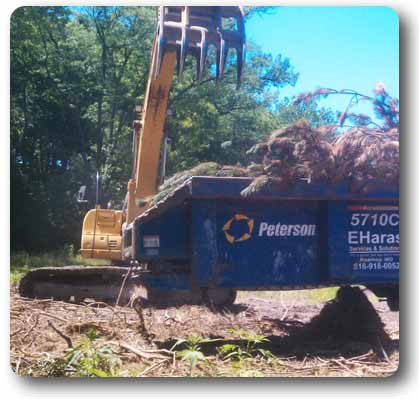 Waste wood and wood debris removal services